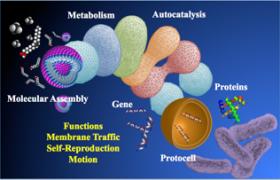 softmatter-bio